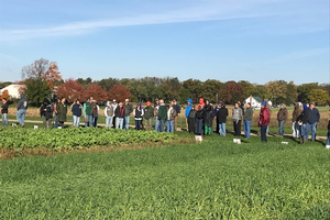 Participants tour cover crop research and demonstration plots during the Nov. 7, 2017, field day at Kellogg Biological Station.