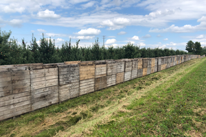 Grand Rapids area apple maturity report – Sept. 11, 2019
