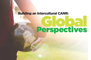 Intercultural CANR: Exploring Global Perspectives