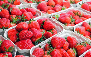 Strawberries and the science behind them