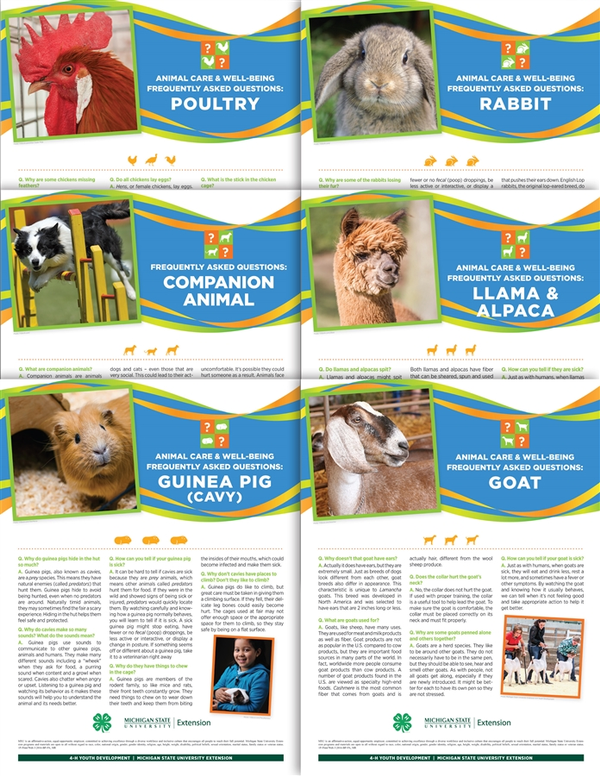 Images of 4H animal posters.