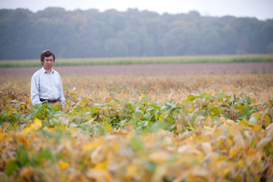 Michigan State University Plant, Soil and Microbial Sciences Professor Dechun Wang is focused on soybean research