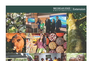 Genesee County Annual Report: 2015-16