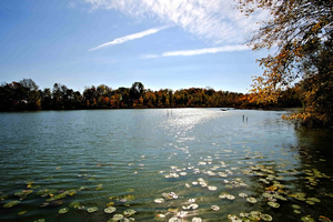 Virtual lakes convention brings lake science to your home