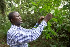 John R.S. Tabuti, participant in the Graduate Certificate in Forest Carbon Science, Policy, and Management