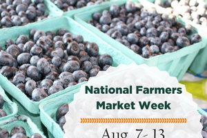 Celebrate National Farmers Market Week with MSU Extension