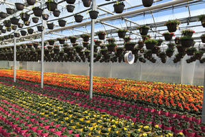 Registration for online greenhouse and horticultural lighting summer course now open