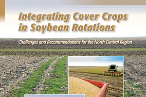 Time to think about cover crops after soybeans