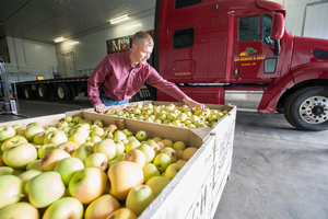 Adam Dietrich, MSU alumnus and grower at Leo Dietrich and Sons, is calling this year's apple crop