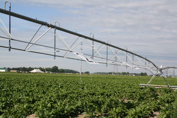 Irrigation in a crop field.