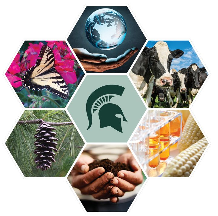 The CANR STEM-FEE Scholars Program provides scholarships for students interested in animal science, crop and soil sciences, forestry, entomology, fisheries and wildlife, food science, or horticulture.