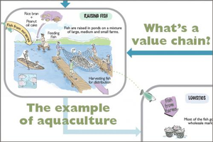 What Is a Value Chain? The Example of Aquaculture