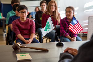 Holding a 4-H officer election can be anxiety-free