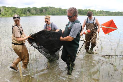 Three teachers assist a scientist in pulling a net out of lake as they experience fisheries science during two-day Lake Huron Place-Based Education Summer Teacher Institute. Photo: Michigan Sea Grant