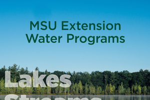 Learn about lakes, streams, and watersheds with MSU Extension