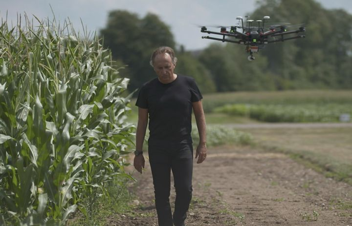 Bruno Basso walks in corn field with drone following