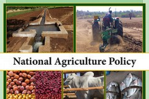 Malawi National Agriculture Policy