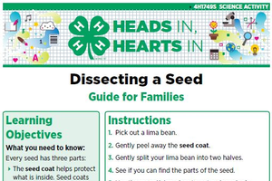 Dissecting a Seed cover page.