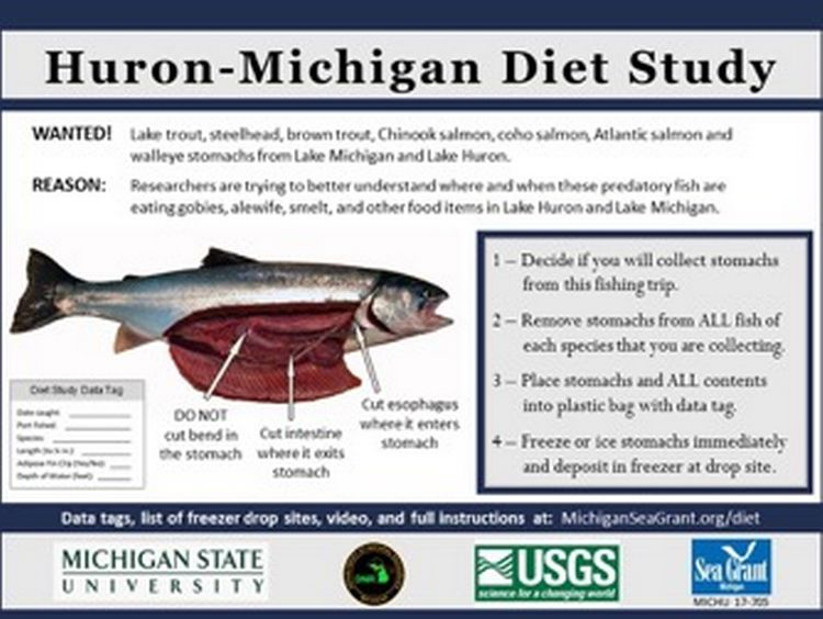 This Huron-Michigan Diet Study printable sign is available at http://www.miseagrant.umich.edu/wp-content/blogs.dir/1/files/2017/05/Diet-Sign-PDF.pdf