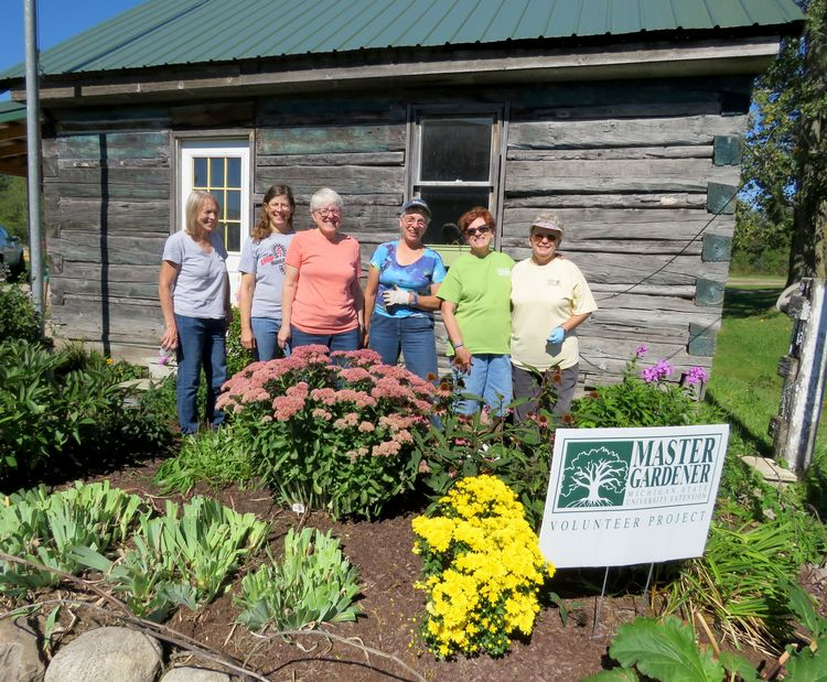 Iosco County Master Gardeners at their heritage/lasagna garden project. L-R: Gloria Kershaw, Cathy Menning, Liz Jacob, Jean Thomas, Louise Shoksnyder and Sue Kindt. Photo by Sarah Rautio, MSU Extension.
