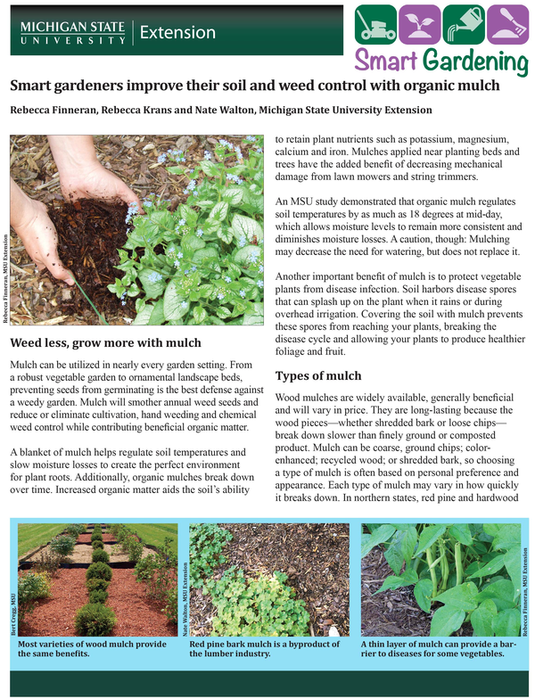 Smart Gardeners Improve Their Soil And Weed Control With Organic