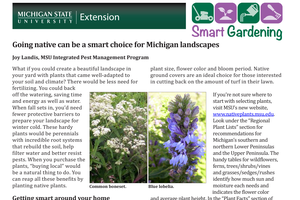 Going native can be a smart choice for Michigan landscapes