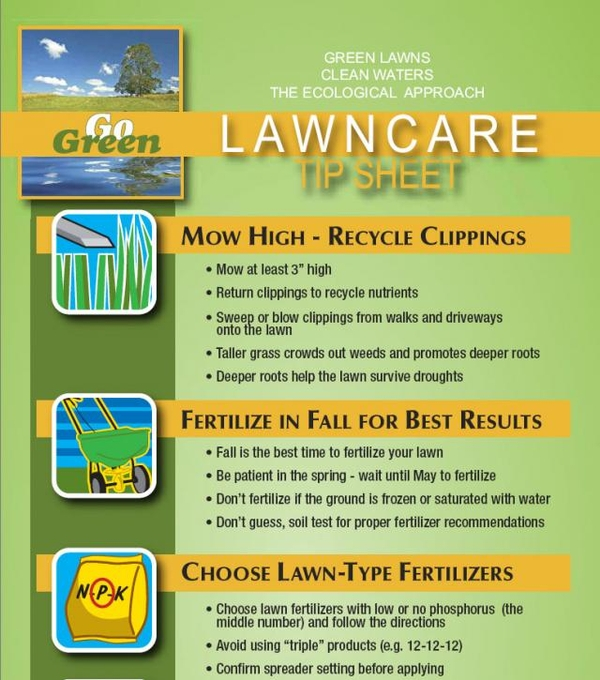 When should I fertilize my lawn during spring? - MSU Extension