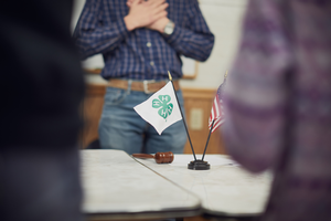 Sample by-laws for 4-H advisory groups – Part 3