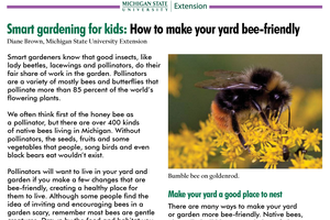 Smart gardening for kids: How to make your yard bee-friendly
