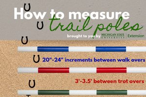 Graphic on how to measure trail poles