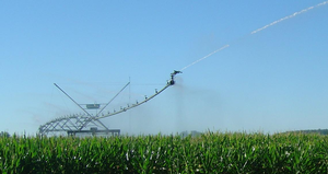 Join the irrigated corn and soybean research field day in southwest Michigan