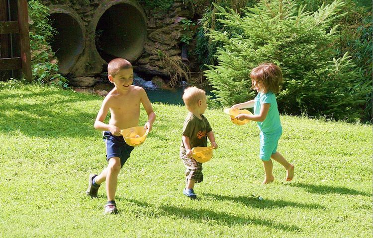 10 Backyard Activities To Do With Children Msu Extension