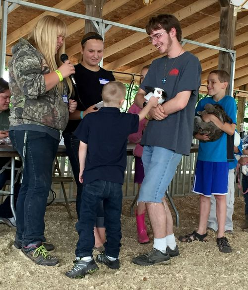 Jonah Wojnar showing a cloverbud how to show his rabbit at the fair. All photos: Theresa Wojnar.