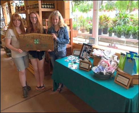 Branch County 4-H members with entrepreneurial projects