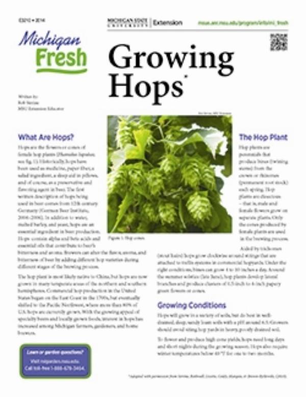 Michigan Fresh: Growing Hops (E3210) - MSU Extension