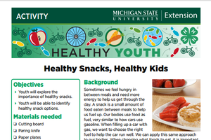 Healthy Youth: Healthy Snacks, Healthy Kids