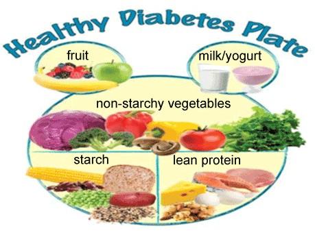 raidl m safaii s 2013 the healthy diabetes plate website teaches meal planning