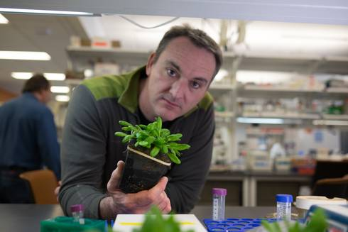 Brad Day in the lab with a plant.