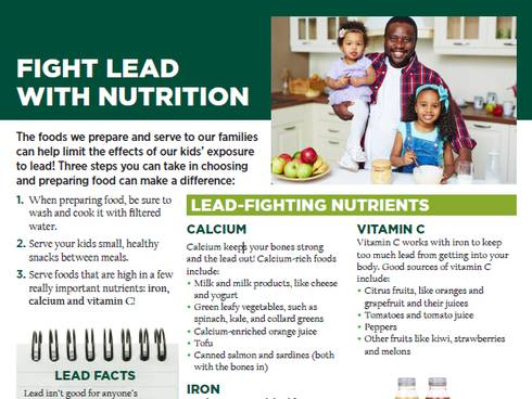 Photo capture of MSU Extension's Fight Lead Exposure website. | MSU Extension
