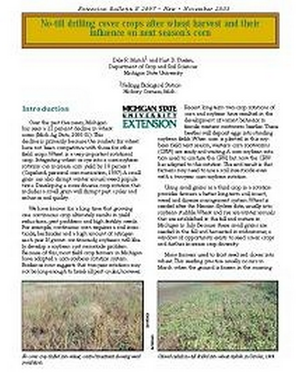 No Till Drilling Cover Crops After Wheat Harvest And Their