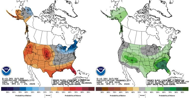 The outlook for temperature (left) and precipitation (right)