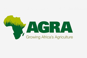 FSG leads AGRA's African Agriculture Status Report (AASR) again in 2020