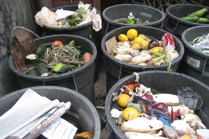 Using communication to reduce food waste