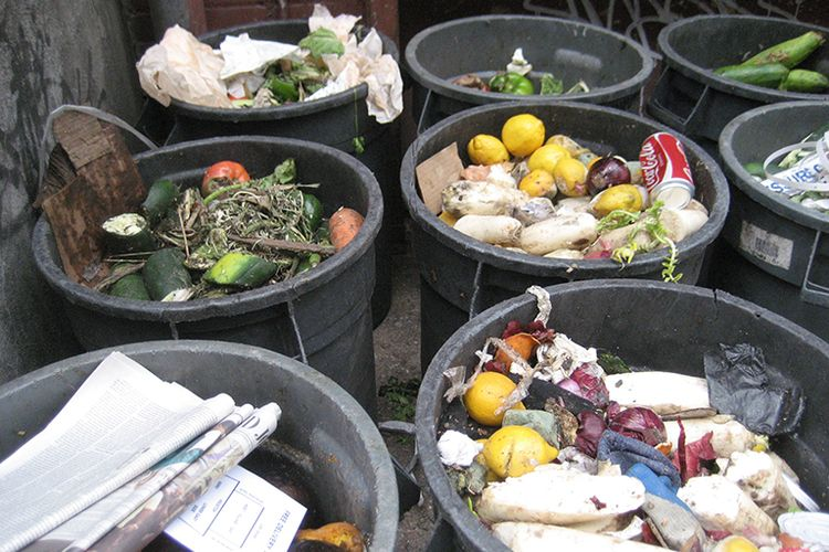 Food waste in trash bins.