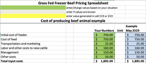 Grass-Finished Freezer Beef Pricing Worksheet