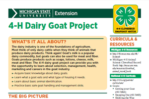 Michigan 4-H Cloverbud Snapshot Sheet: 4-H Dairy Goat Project (4H1726)
