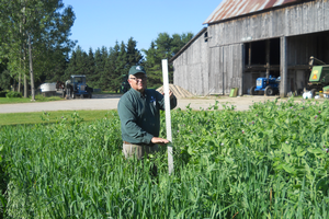 Pea and oat trial in Upper Peninsula completed — Part 1: Yields