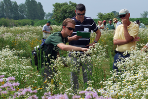 Pollinator Health Meetings To Be Held In Traverse City Frankenmuth And West Olive Msu Extension