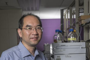 Hui Li, associate professor in the department of Plant, Soil and Microbial Sciences and recipient of the 2017 Jackson Soil Chemistry and Mineralogy Award.