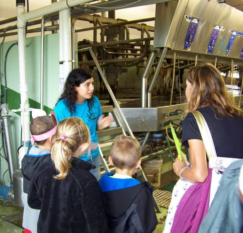 Paola Sanguesa, MSU Extension dairy educator, staffing an educational station in the milking parlor at Hood Farms Family Dairy on August 25, 2018.